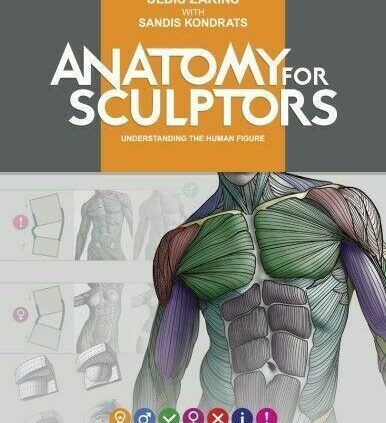 Anatomy for Sculptors Thought the Human (Book) {PDF,Epub,Kindle}