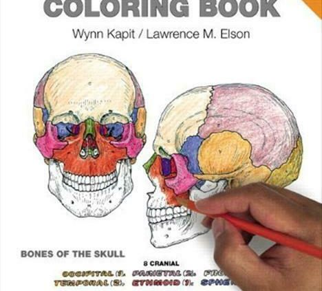 The Anatomy Coloring Guide