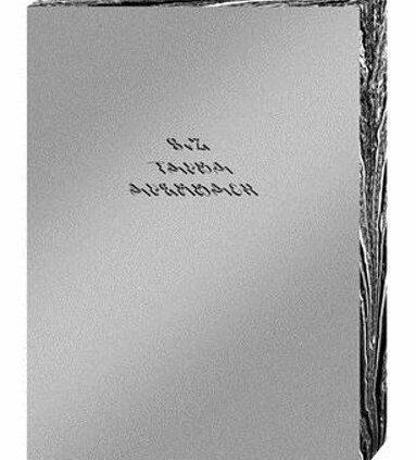 Tauba Auerbach — S V Z by Tauba Auerbach: Contemporary