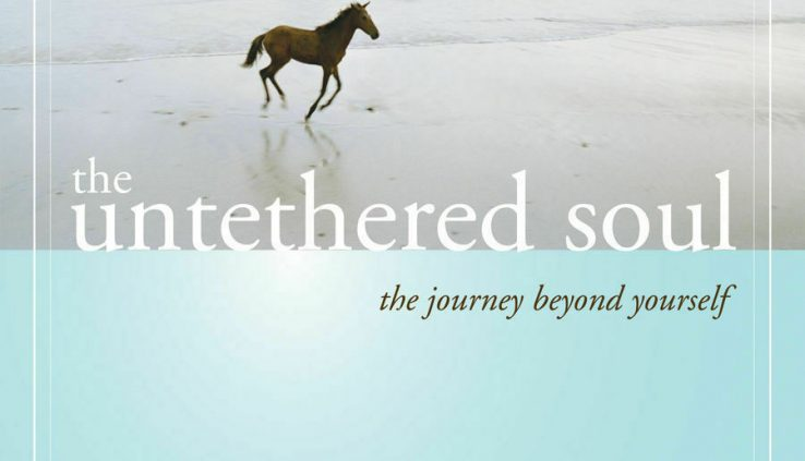 The Untethered Soul by Michael A. Singer (2007, Digitaldown)