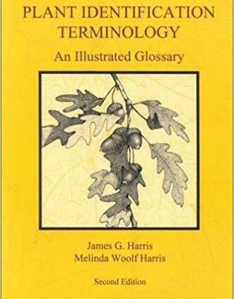 Plant Identification Terminology: An Illustrated Observe list 2nd Version